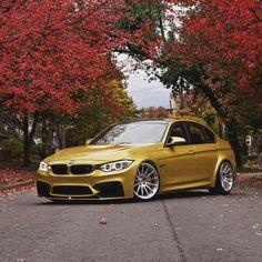 BMW F80 M3 yellow fall