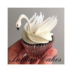 "Sarka Maslovaさんのツイート: ""Beautiful and delicate swan chocolate cupcake #chocolate #sarkascakes #swan #cupcakes #homemade #Baker #cakeartist… """