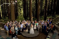 Family and friends celebrate Stephanie and Greg under the redwoods at the UC Botanical Garden in Berkeley California.