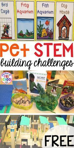 Building Pet Homes (a FREEBIE) - Pocket of Preschool Blocks Center: Pet Home STEM challenge posters (FREEBIE) for preschool, pre-k, kindergarten, and first. Fun for a pet theme. Preschool Themes, Preschool Science, Science Activities, Activities For Kids, Stem For Preschoolers, Creative Curriculum Preschool, Preschool Spanish, Stem Curriculum, Science Classroom