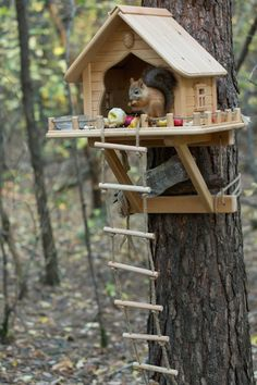 Squirrel Feeder Diy, Squirrel Home, Diy Bird Feeder, Outdoor Projects, Wood Projects, Woodworking Projects, Box Deco, Bird Houses Diy, Decorative Bird Houses