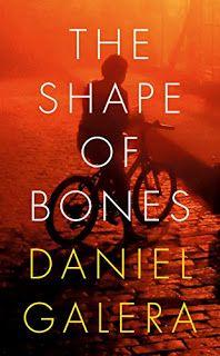 Literary Flits: The Shape Of Bones by Daniel Galera