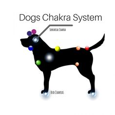 Working with Animal Chakras-humanityhealing