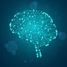 LEARNING BRAIN CONNECTIONS - Google Search