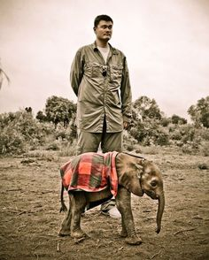 Yao Ming is on a journey through Africa to raise awareness of the poaching crisis facing Elephants and Rhinos.  Daphne Sheldrick's Elephant Orphanage is part of the David Sheldrick Wildlife Trust.