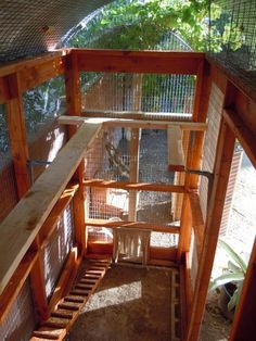 elevated guinea fowl coop - Google Search