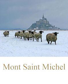 Mont Saint Michel sous la neige ~ France ~ Les moutons à têtes noires!! Such a beautiful place. I miss France!