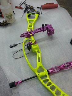 Custom Hoyt bow