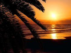 Florida....a beach. Sigh.