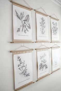 Farmhouse wall decor inspiration and ideas: Gallery wall pretty poster frames with vintage botanical prints. Farmhouse wall decor inspiration and ideas: Gallery wall pretty poster frames with vintage botanical prints. Diy Vintage, Vintage Wall Art, Vintage Home Decor, Vintage Walls, Vintage Frames, Vintage Posters, Vintage Flower Prints, Vintage Botanical Prints, Vintage Flowers
