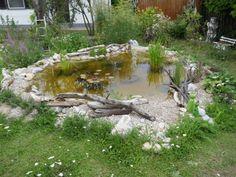 Zu Gast im Hortus Campanularum, dem Garten der Glockenblumen – Hortus Girasole Garden Bridge, Golf Courses, Wildlife, Cottage, Outdoor Structures, Blog, Gardening, Permaculture, Insect Hotel