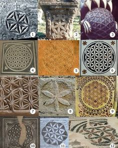 Sacred Geometry Meanings, Sacred Geometry Tattoo, Flower Of Life Symbol, Life Flower, Flower Of Life Pattern, All Galaxies, Fibonacci Spiral, Seed Of Life, Ancient Symbols