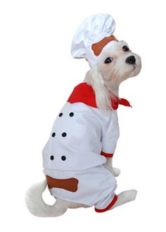 Chef Pet Costume | Accessories & Makeup for Pet Costume