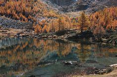 Ultimissime dall'orto: al Lago d'Arpy #Morgex #ValledAosta #ValléedAoste