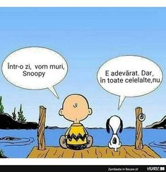 Intr-o zi, vom muri. Psychology Quotes, Peanuts Comics, Funny Quotes, Snoopy, Thoughts, Face, Funny Phrases, Funny Qoutes, The Face