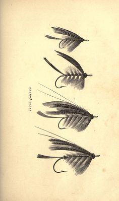 Antique Fly tying pics, looks like you can print for PUO