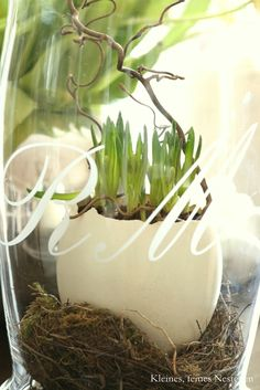 Spring Decoration. moss at bottom of mason jars with something in them