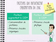 Absorption du zinc Nutrition And Dietetics, 100 Calories, Medical, App, How To Plan, Health, Nursing, Study, Fitness