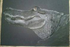 Work in progress. Charcoal and pastel. Artist Tracey Everington of Tracey Lee Art Designs. www.traceyleeartdesigns.com