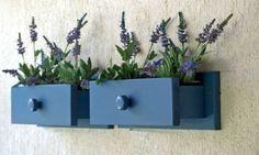 plantas en cajones #reciclar                                                                                                                                                                                 Más
