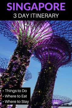 Do you only have 3 days in Singapore? Make the most of your visit with our perfect 3 day Singapore itinerary for first timers, including the best things to do, where to eat, where to stay and Singapore travel tips. Singapore Things To Do, Singapore Travel Tips, Singapore Itinerary, Visit Singapore, Singapore Trip, Singapore Tour Guide, Singapore Where To Stay, Singapore Sling, Best Travel Guides
