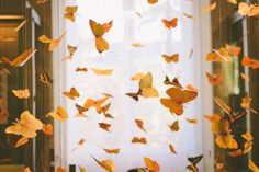 """Find and save images from the """"aes: Demeter"""" collection by Ari (witheringwing) on We Heart It, your everyday app to get lost in what you love. Hogwarts Houses, Mellow Yellow, Mustard Yellow, Aesthetic Vintage, Story Inspiration, Aesthetic Pictures, We Heart It, Butterfly, Interior"""