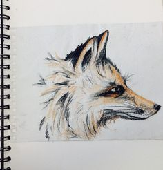 Fox Watercolour sketch - Lou Tagg