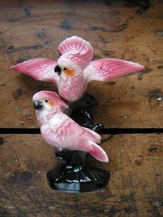 Porcelain parrots vintage