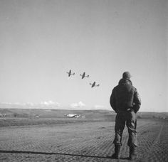 """""""Tuskegee Airman Photo by Toni Frissell March 1945 Library of Congress """" Aeropostale, Tuskegee Airmen, Booker T, Photo Composition, Iconic Photos, Famous Photographers, Nose Art, Library Of Congress, Fine Men"""