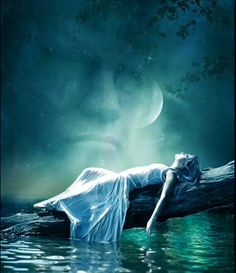 Dream Fantasy, Dark Fantasy Art, Double Picture, Throne Of Glass Series, Beautiful Moon, Digital Art Girl, Animation, Paintings I Love, Weird World