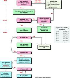 AHA 2010 - Algoritmo Reanimacion Neonato