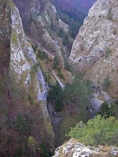 Manínska tiesňavaje národná prírodná rezervácia,ktorá sa nachádza neďaleko mestaPovažská Bystrica.