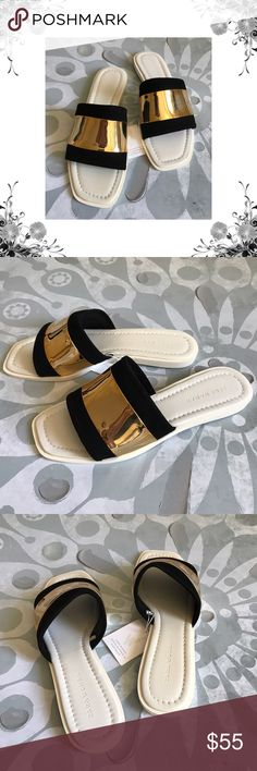 "Zara Metallic Suede Slide Sandals Manufacturer Color is Black/White/Gold. New with box. Slide Sandals. Heel Height is 1/2"". Platform Height is 1/4"". *Measurements are approximate. Black Suede fabric and Metallic gold bands. Bundle for discounts! Thank you for shopping my closet! Zara Shoes Sandals"