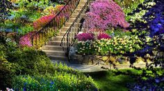 Butchart Gardens in Victoria - truly heaven on earth One of the most beautiful gardens I have ever witnessed. Amazing Gardens, Beautiful Gardens, Beautiful Flowers, Prettiest Flowers, Beautiful World, Beautiful Places, Stunningly Beautiful, Garden Wallpaper, Spring Wallpaper
