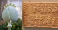 New Research Provides First Peek at Ancient Mesopotamian Drug Use