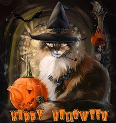 En attendant Halloween    ...   images à partager  !