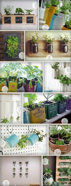 7 Great Ideas For An Indoor Herb Garden | Gardens, Growing Plants