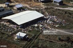 Dead bodies lie around the compound of the People's Temple cult November 18, 1978 after the over 900 members of the cult, led by Reverend Jim Jones, died from drinking cyanide-laced Kool Aid; they were victims of the largest mass suicide in modern history.