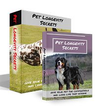 """""""Pet Longevity Secrets"""" is a new guide that was written by Dan Logan to all of the people that care for their pet's health. This post from onecarenow explains more about this guide and provides information on its various pros and cons..."""