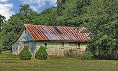 This old white weathered shed/garage was seen on Swisher Road in Champaign County, Ohio. It's still in use and is in the back yard of a beautiful home.   The tin roof is rusted, and the siding could use some paint. But this is the type of image I like best.