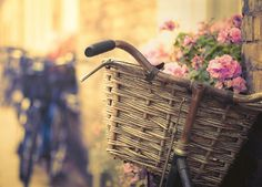 i love photos with bikes and baskets