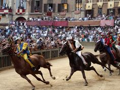 Cheer on the riders at the Palio di Siena bareback horse race, which takes place in Siena twice each year: on July 2nd and August 16th.