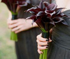 Bridesmaid's Bouquets Of Aubergine Calla Lilies