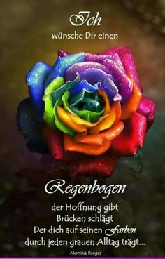 The Rainbow Rose. Wish this was a real rose, would be so cool if it was Beautiful Rose Flowers, Love Rose, Exotic Flowers, Rainbow Flowers, Rainbow Art, Rainbow Colors, Bright Colors, Rainbow Aesthetic, Flower Aesthetic