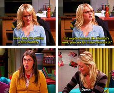Gosh, Amy, I'm sensing a little hostility. Is it maybe because, like Sheldon's work, your sex life is also theoretical? / Damn.