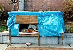 38 Homeless Portable Shelter Ideas Portable Shelter Homeless Homeless Shelter