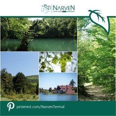 Doğayla iç içe bir gün geçirmek, Narven'i keşfetmek için sizi tanıtım  turumuza davet ediyoruz! http://narven.com.tr/turform.php
