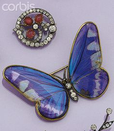 A Victorian gold, diamond and butterfly wing brooch with diamond body, gem and rose-cut diamond head and butterfly-wing set. Wings under shaped glass, the gold mount engraved BREVETE DANS TOUS LES PAYS.