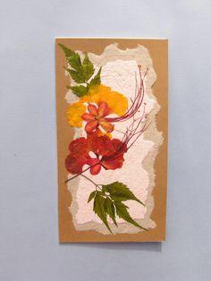 Set of 10 Pressed Flower Cards 1 Bonus Card Made With Desert