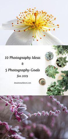 10 Photography Ideas & 5 Goals for 2019 - Dreamer Achiever The Dreamers, Dandelion, Goals, Photography Ideas, Flowers, Plants, Blog, Dandelions, Photoshoot Ideas